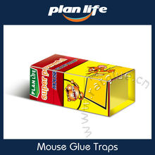Hot Melt Adhesive Household Control Box Mouse Glue Trap