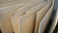 paulownia jointed board for furniture