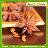 Dehydrated dried star anise star anise fruit