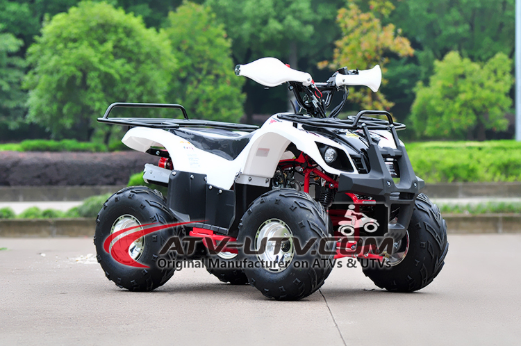 China Made Cheap Price kids gas powered mini quad atv 50cc