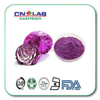 hot sale natural Red cabbage powder plant extract