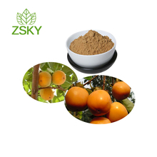 High Quality Persimmon Extract Powder from GMP Certified Manufacturer