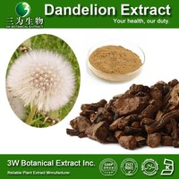 Food Grade Supplement Dandelion Extract 10 1 High Quality Dandelion Extract Dandelion Extract Flavonoid