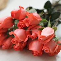 Fresh pink rose beautiful cut flowers from China