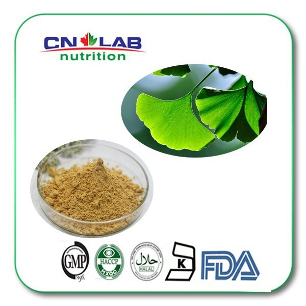 GMP Ginkgo Biloba Supplier /Ginkgo Biloba Leaf/ Extract Powder for Health Care Product