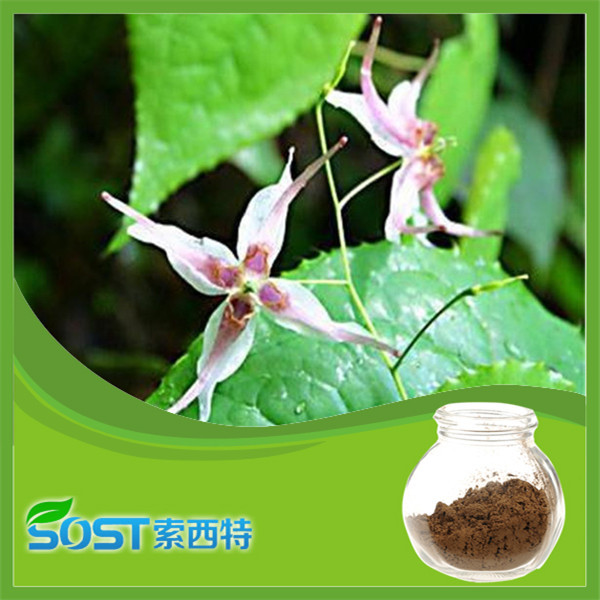 Herbal medicine factory supply epimedium p.e.