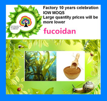 anti-oxidation-fucoidan extract
