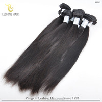 Top Quality Wholesale Brazilian Human Hair Perruque