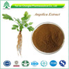 Bv Certificate High quality hot sale Natural Herbal Angelica Extract