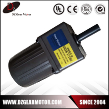 Micro Size AC 110V High Torque Low rpm Electric Motor