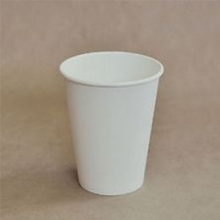 Foam PLA paper cup with 3D printing