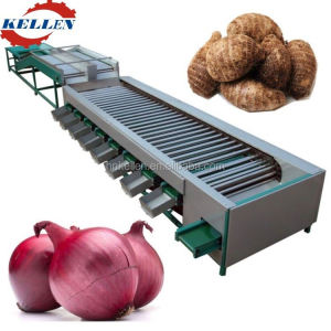 Best quality and high efficiency orange size sorting machine