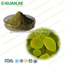 Cosmetic Yeast Extract,Yeast Extract for Skin Care