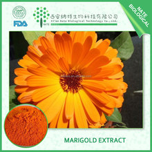 wholesale low price Marigold P.E Extract powder lutein 10:1FREE SAMPLE