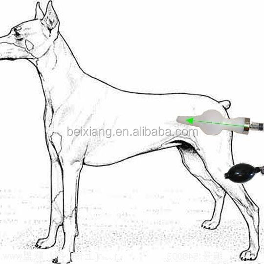 Artificial Insemination Equipment for Dog
