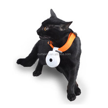 1year warranty usb pet video camera for your lovely pets
