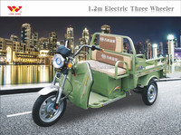New model factory bajaj three wheeler price/3 wheel cargo electric bike/electric tricycle