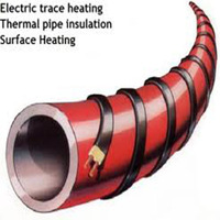 HWSR long-term reliability element heat trace for hot water pipes