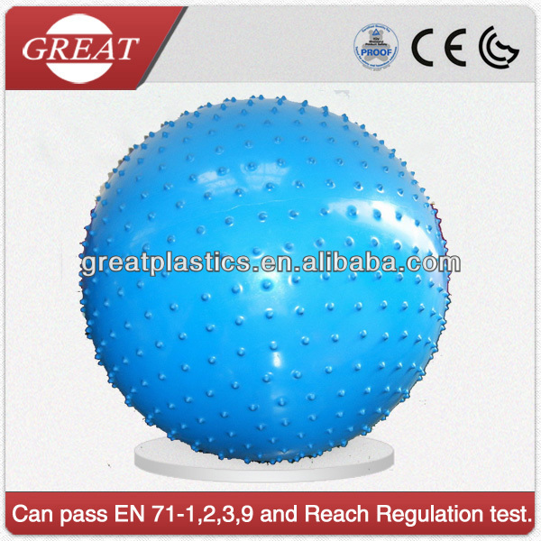 65cm blue Yoga Ball Promotion