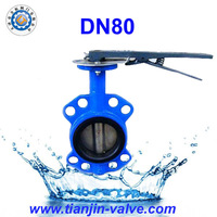 Wedge gate valve,centric butterfly valve