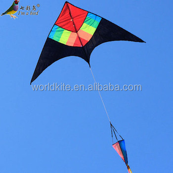 colorful delta wing kite with rainbow tail
