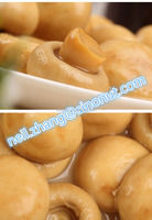 HEALTH FOOD NEW SEASON COMING YOUR BEST CHOICE CANNED MUSHROOM WHOLE