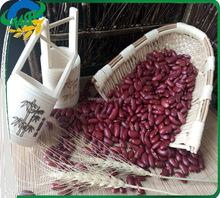 Chinese Dark Red Kidney beans for Europ