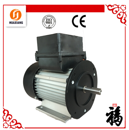 China good wholesalers 220v 100kw electric car motor