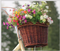 Hot sale New Decoration Gifts Arts Wholesale Willow Baskets Wicker Bicycle Baskets dog Bike Baskets