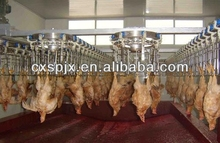 good halal chicken slaughter line/slaughterhouse equipment