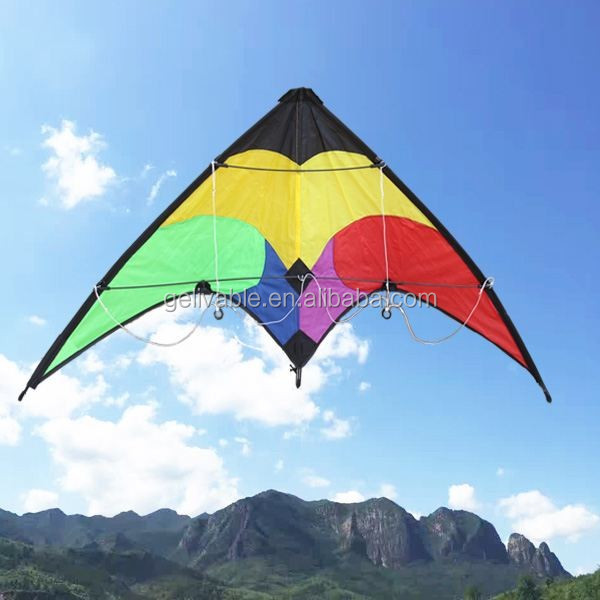 Dual Line 1.2m Small delta sports kites from the kite factory (1).jpg