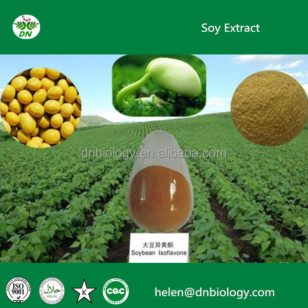 Soybean extract ,best soybean extract powder/best quality soybean plant extract