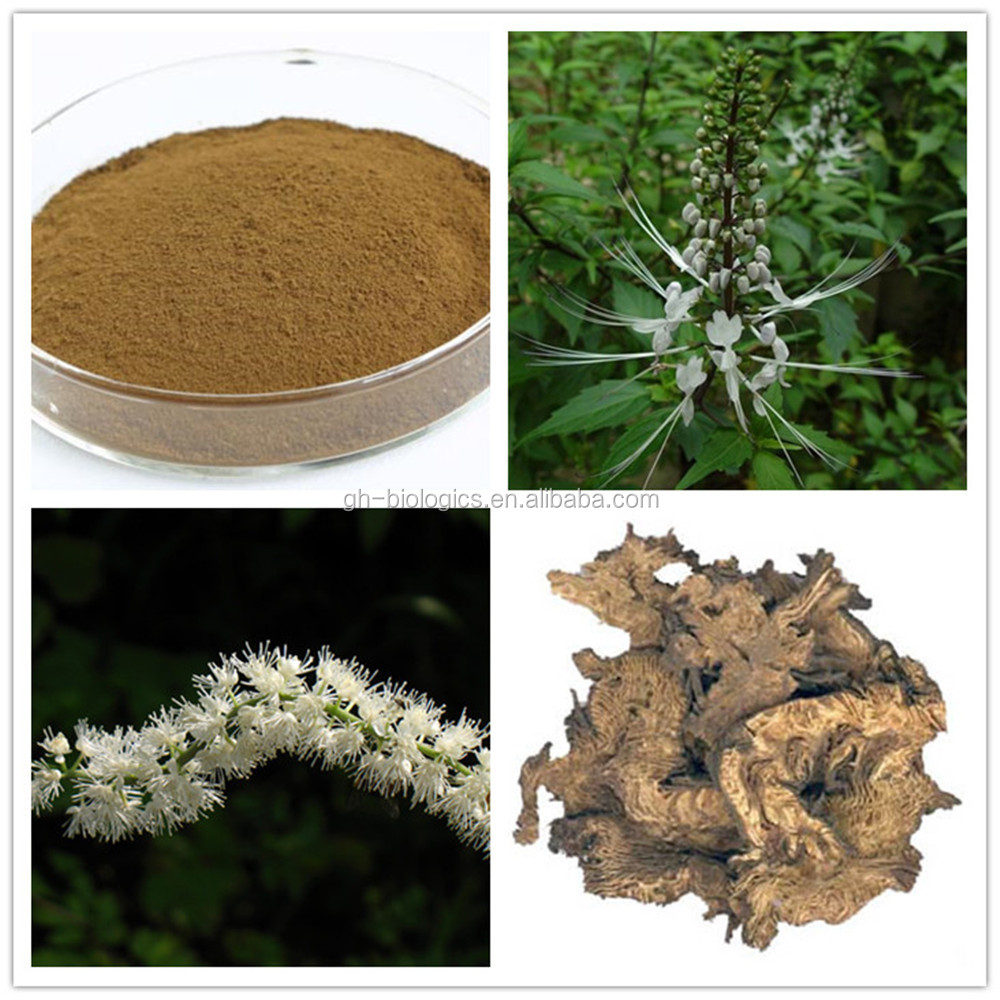 Black Cohosh Extract 2.5% Triterpenoides Saponis