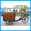 Three Wheel Bicycle for Adults Electric Three Wheel Bike Cargo