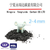 Granular Peach shell activated carbon manufacturer plant