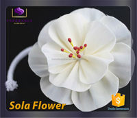 wholesale handmade sola flower for reed diffuser trade assurance aroma diffuser sola flower