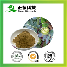Spary Dried Bulk Store Tribulus Terrestris 40% Saponins Powder for Tabletting