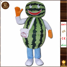 The Newest latest watermelon cheap mascot costume sex
