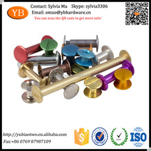 Colored Coated Anti Corrosion Customized Binding Chicago Screws