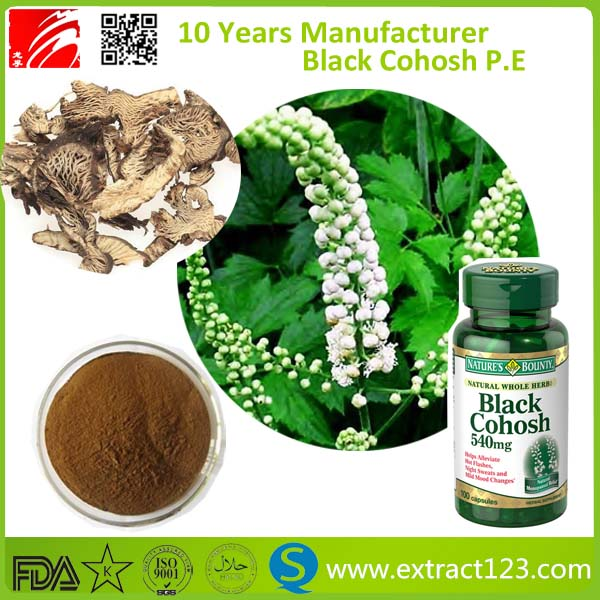 GMP Factory Supply Black Cohosh Extract Powder Triterpenoid Saponis