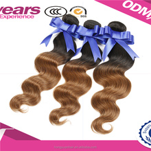 Free sample!!!1 Bundle 100-200g Unprocessed 100% Remy Virgin Brazilian Human curly Hair Extensions curly hair Weaving