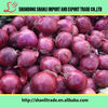 /product-detail/natural-chinese-onion-organic-onion-fresh-red-onion-60500596450.html