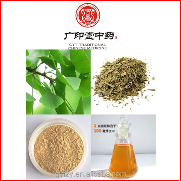 Low Blood Fat Ginkgo Leaf P.E. Ginkgo biloba Leaf Extract