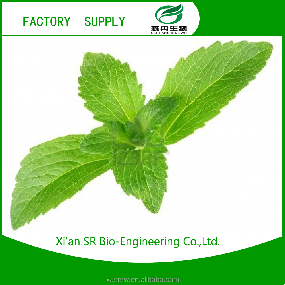 SR Stevia Plant Extract/sttevia Manufacturer China