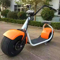 the most fashionable citycoco 2 wheel electric scooter adult two wheel electric motorcycle