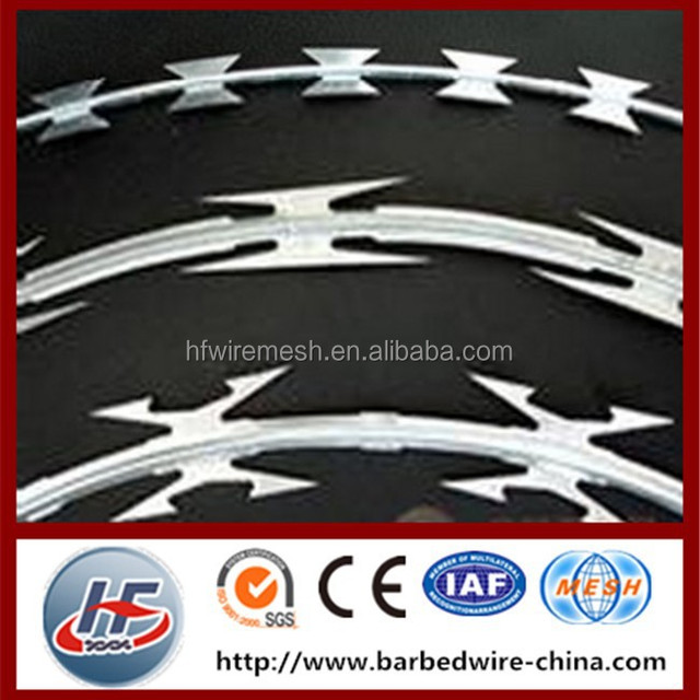 Canton packing galvanized security concertina razor barbed wire,razor wire fencing,high zinc coated galvanized razor wire