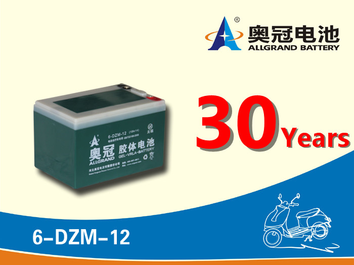 12v12ah battery wisdom 6 dzm 12 e-bike / scooter / e moto agm lead acid battery