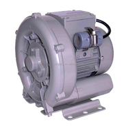 Fish Pond Aeration Air Blower DG-100-11