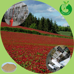 Red clover/red clover extract/red clover seeds red clover Isoflavones