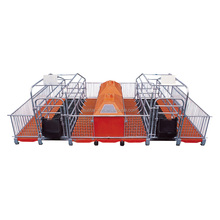 Pig Farrowing Crates With Galvanized Steel Pipe Sow Feeder